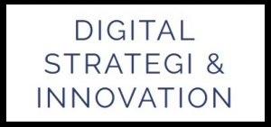 DSI_logo2